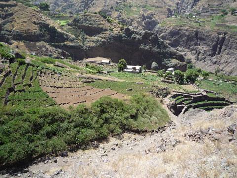 Irrigated Farms, Cape Verde