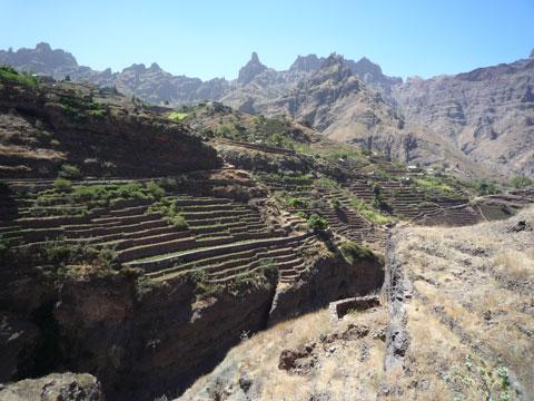 Irrigated Terraces, Cape Verde
