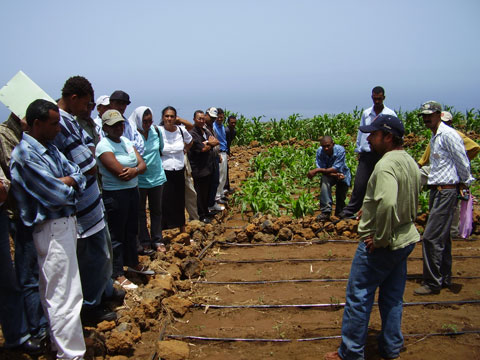 Irrigation Extension Training, Cape Verde