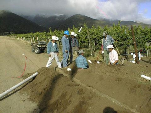 Irrigation Retro fit, California