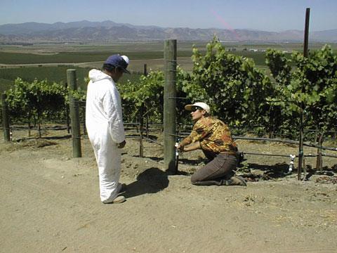 Irrigation Troubleshooting Training, California