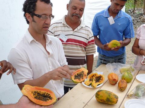 Postharvest Training in Cape Verde, Africa