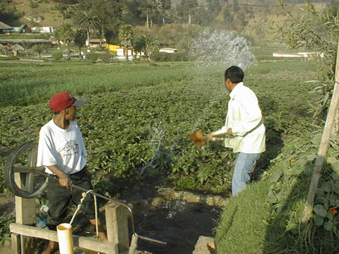 Rosary Pump and Irrigation by Paddle, Guatemala