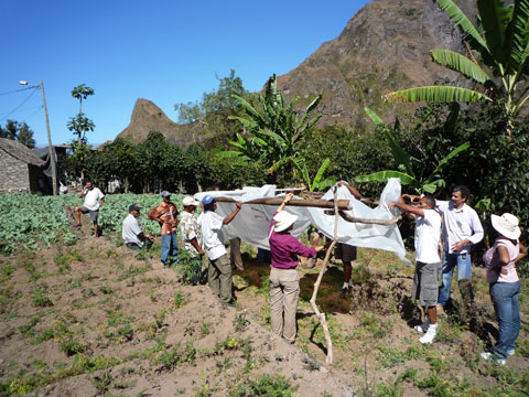 Shade Structure Demonstration, Cape Verde