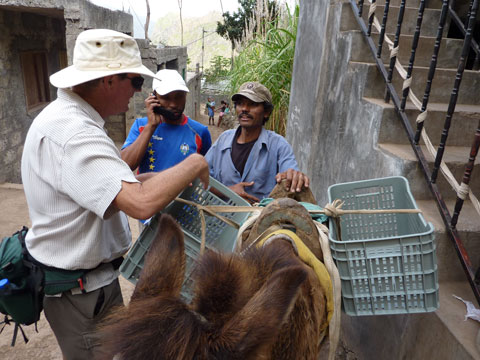 Sizing carry racks for plastic produce crates, Cape Verde