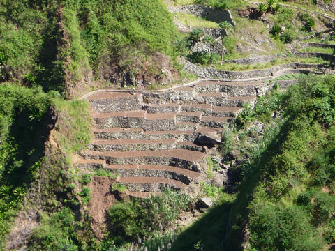 Terraces prepared for drip irrigation, Cape Verde, Africa