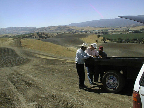 Vineyard Hillside Irrigation, California